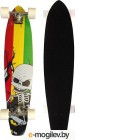 Скейтборд HW Long Board 38 SCULL